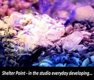 Shelter Point in the studio
