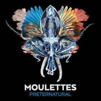 Preternatural (Bonus Track Version) - Moulettes